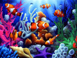 Clown Fish - Diamond Art Kit