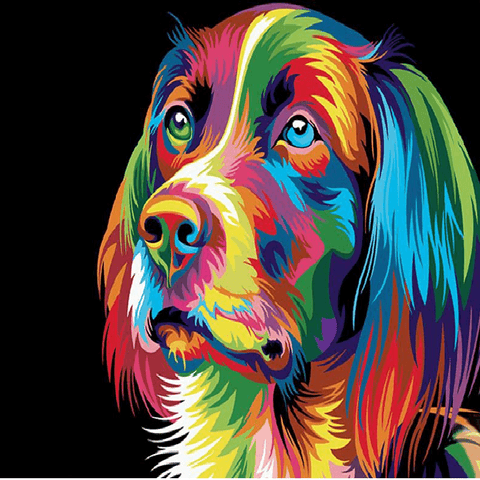 Colorful Cocker Spaniel Dog