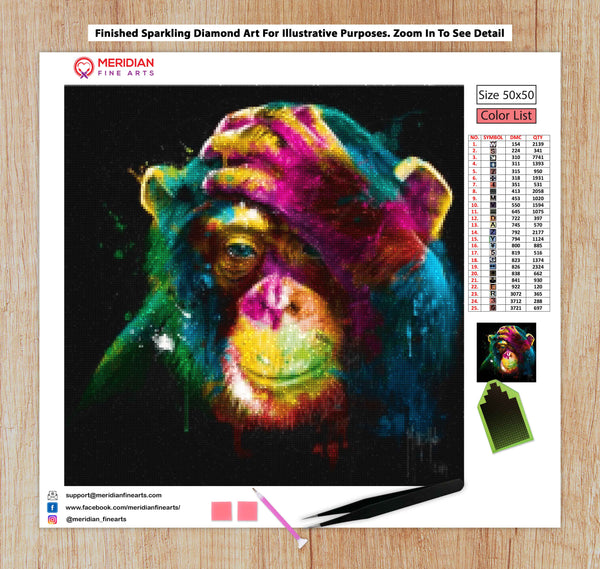 Colourful Monkey - Diamond Art Kit