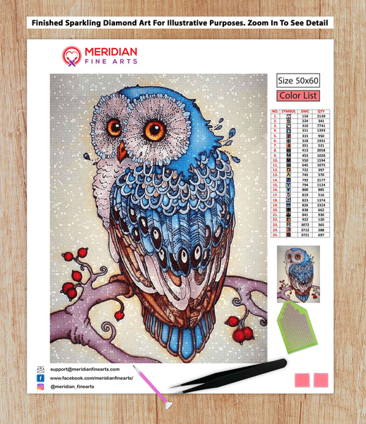 Cute Owl - Diamond Art Kit
