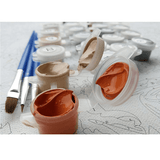 Paints and paintbrushes for Meridian Paint by Numbers kit