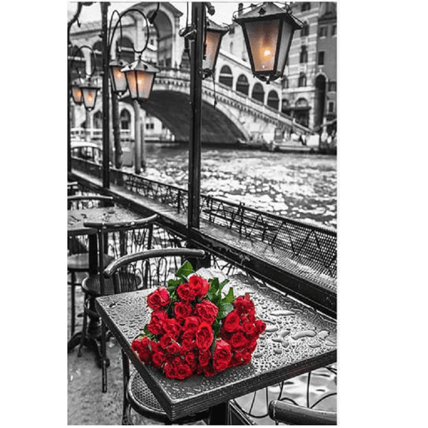 Red rose by the canal