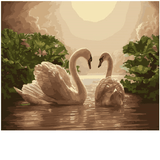 Swan Lovers on Moonlit Lake