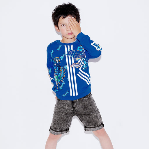 Boys Cotton Tiger Freyo Sweatshirt