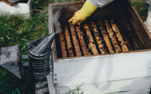 How Much Time Do I Have to Invest to be a Beekeeper?