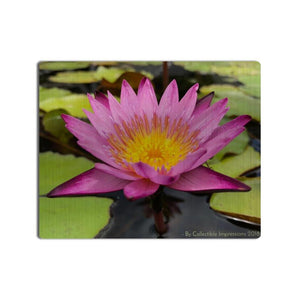 "Metal Print ""Dark Pink Water Lily"" Photography By Collectible Impressions"