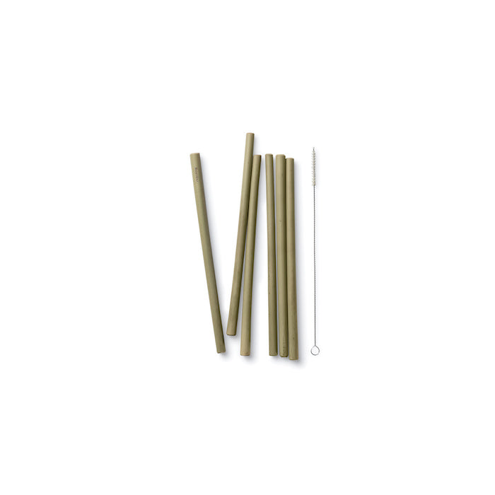 Reusable Bamboo Straws - Set of 6 with brush
