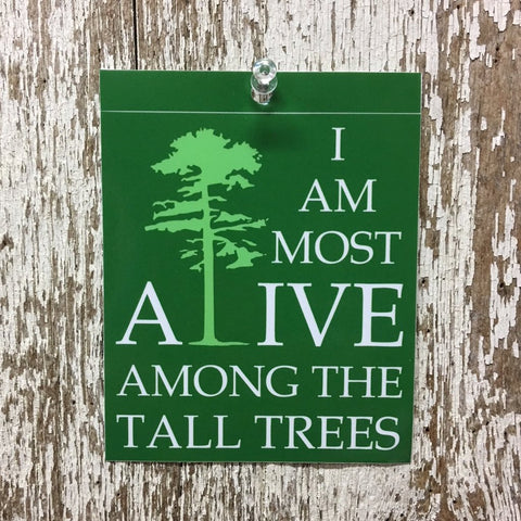 i am most alive among the tall trees green sticker