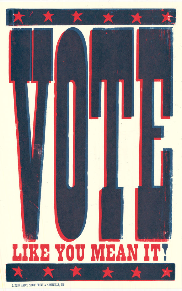 VOTE LIKE YOU MEAN IT