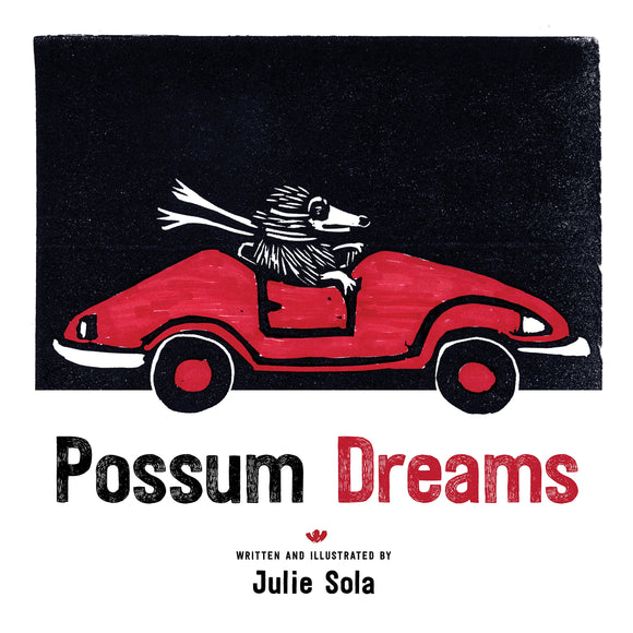 Possum Dreams by Julie Sola