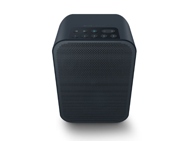 Bluesound Pulse Flex 2i Wireless Speaker