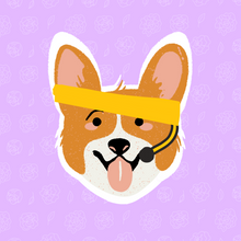 Coxie the Corgi Sticker **3-Pack**