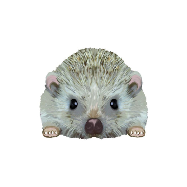 Hedgehog Removable Wall Decal by Evolve Philly
