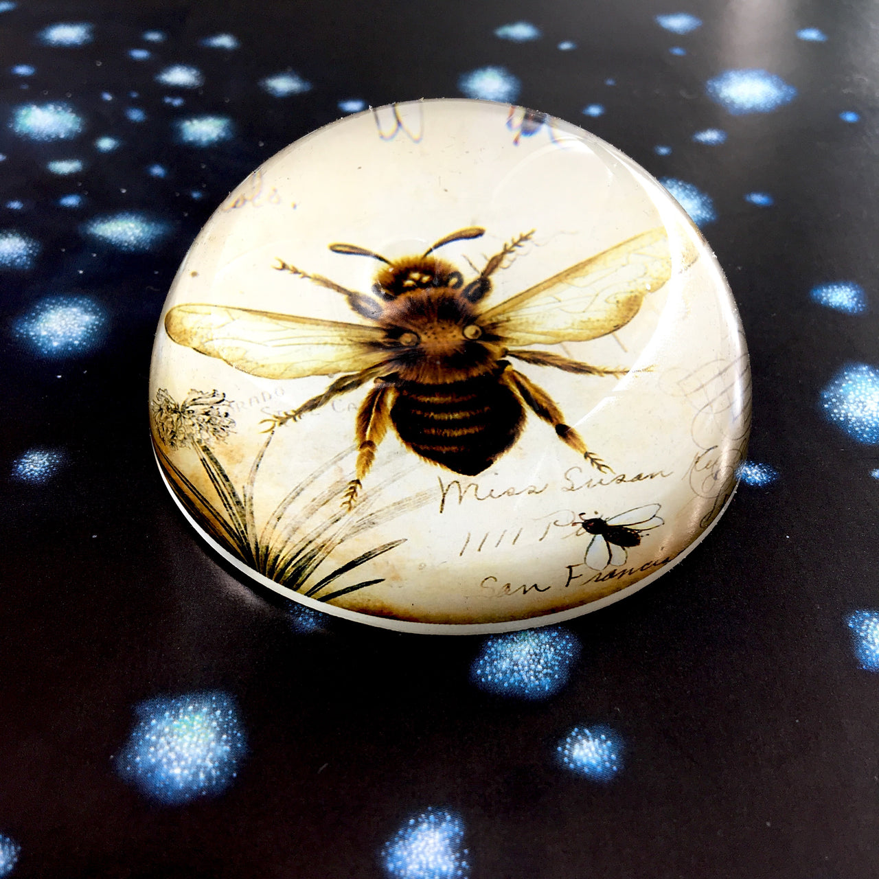 Honey Bee Paperweight