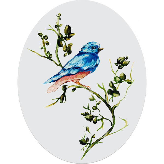 Woodland Robin on Branch Frosted Glass Decal for Window or Car