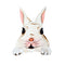 white rabbit lightswitch topper decal shown alone