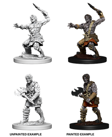 Dungeons & Dragons Nolzur's Marvelous Miniatures: Nameless One