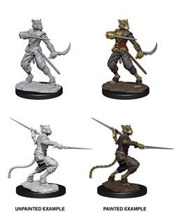 Dungeons & Dragons Nolzur's Marvelous Miniatures: Tabaxi Rogue (Male) - Dungeons and Dragons - The Hooded Goblin