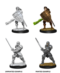 Dungeons & Dragons Nolzur's Marvelous Miniatures: Human Fighter (Male)