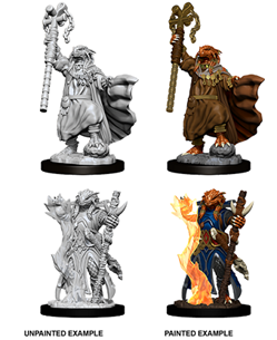 Dungeons & Dragons Nolzur's Marvelous Miniatures: Dragonborn Sorcerer (Female) - Dungeons and Dragons - The Hooded Goblin