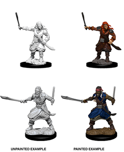 Dungeons & Dragons Nolzur's Marvelous Miniatures: Bandits