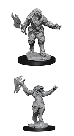 Dungeons & Dragons Nolzur's Marvelous Miniatures: Dragonborn Fighter Female