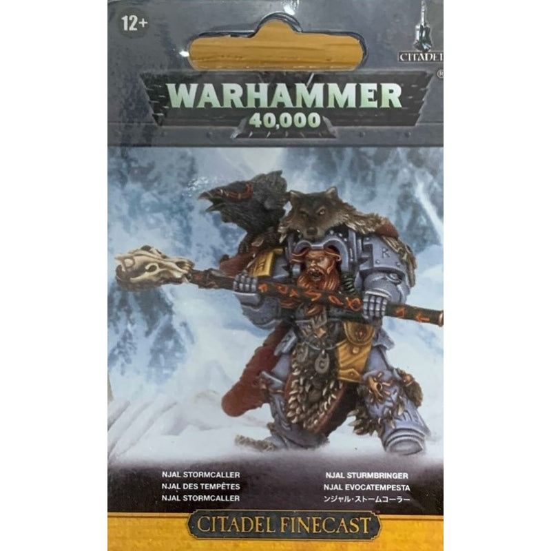 Njal Stormcaller in Terminator Armour - Warhammer: 40k - The Hooded Goblin
