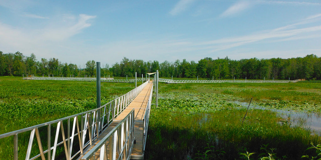 Outaouais: Parc national de Plaisance