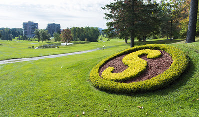 Quartet Golf Package - 18 holes by Club de Golf Sherbrooke