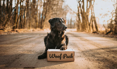 Woof Pack gift box, original treats for dogs! by Woof Pack