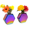"Glass Rainbow Flower Vase: Colorful Wall Mountable Vase (5""x5.25"" - Pack of 2)"