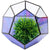 "Geometric Purple Glass Terrarium: Small Vase Planter (5.5"" x 7"")"