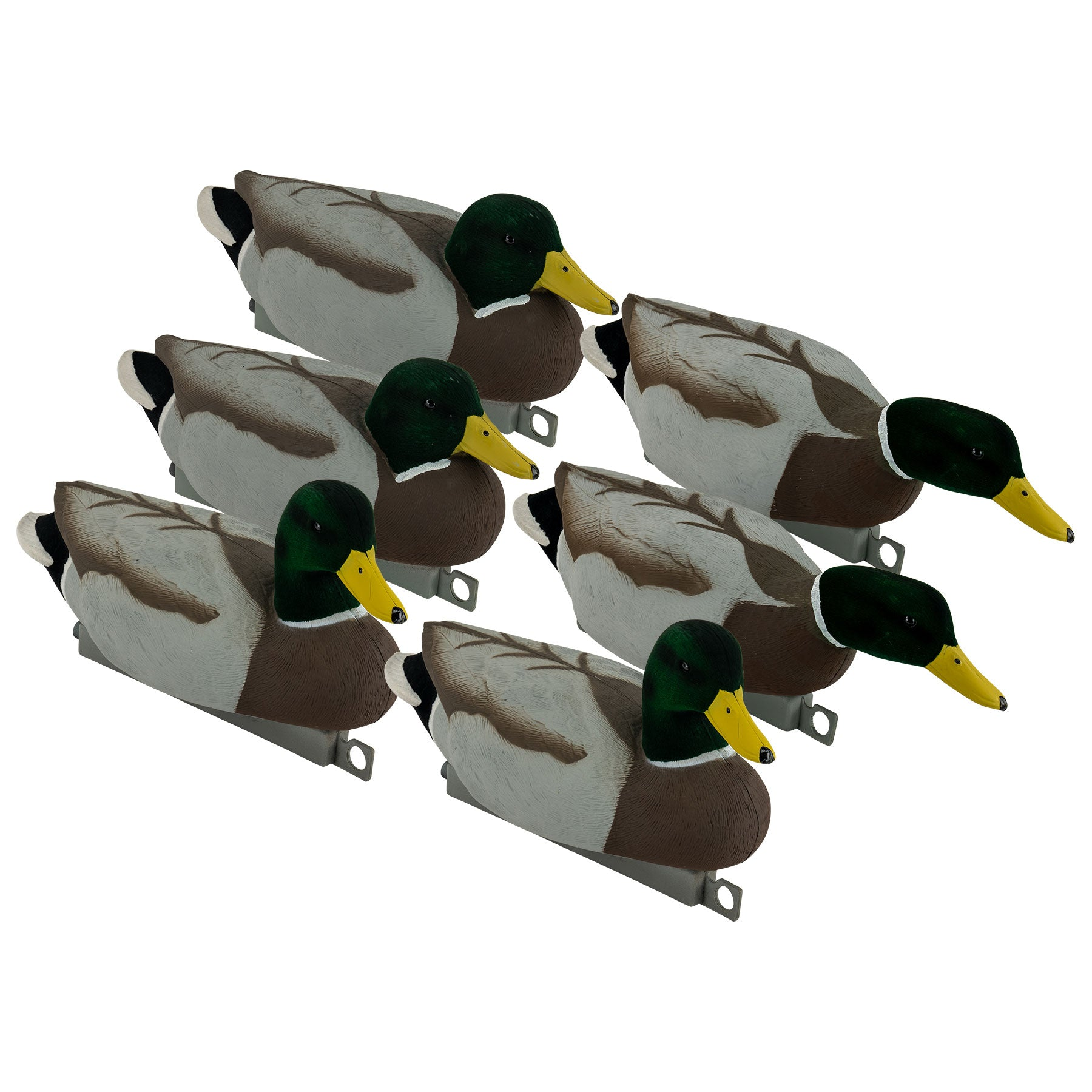 Migration Edition Mallard Drake Combo Pack - Flocked Head & Tail