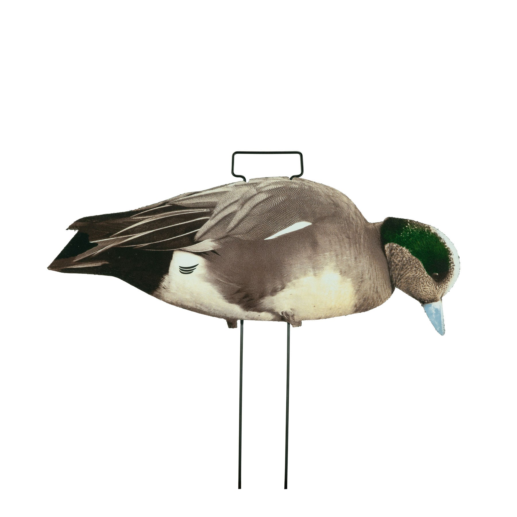 Fully Flocked Wigeon Skinny Decoys