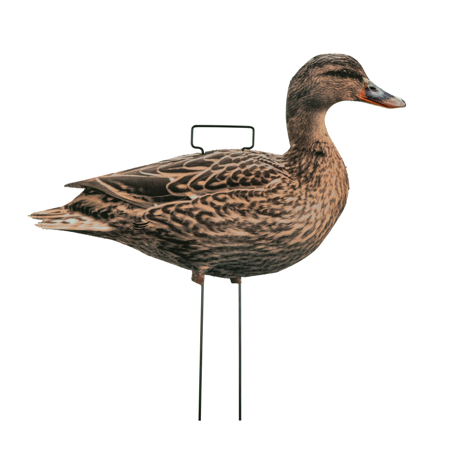 Fully Flocked Mallard Skinny Decoys