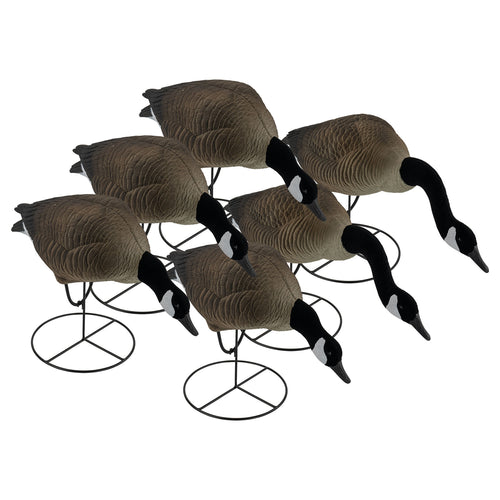 Pro Series Full Body Canada Goose Feeders