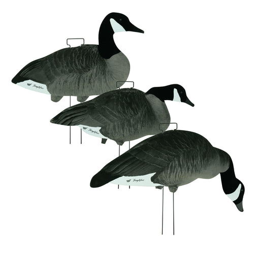 Fully Flocked Canada Skinny Decoys