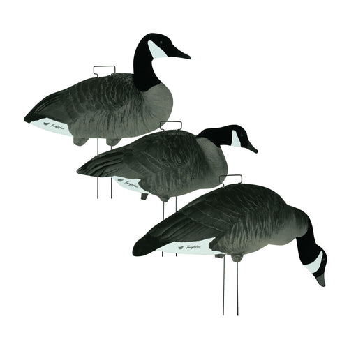 Fully Flocked Lesser Canada Skinny Decoys