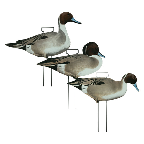 Fully Flocked Pintail Skinny Decoys