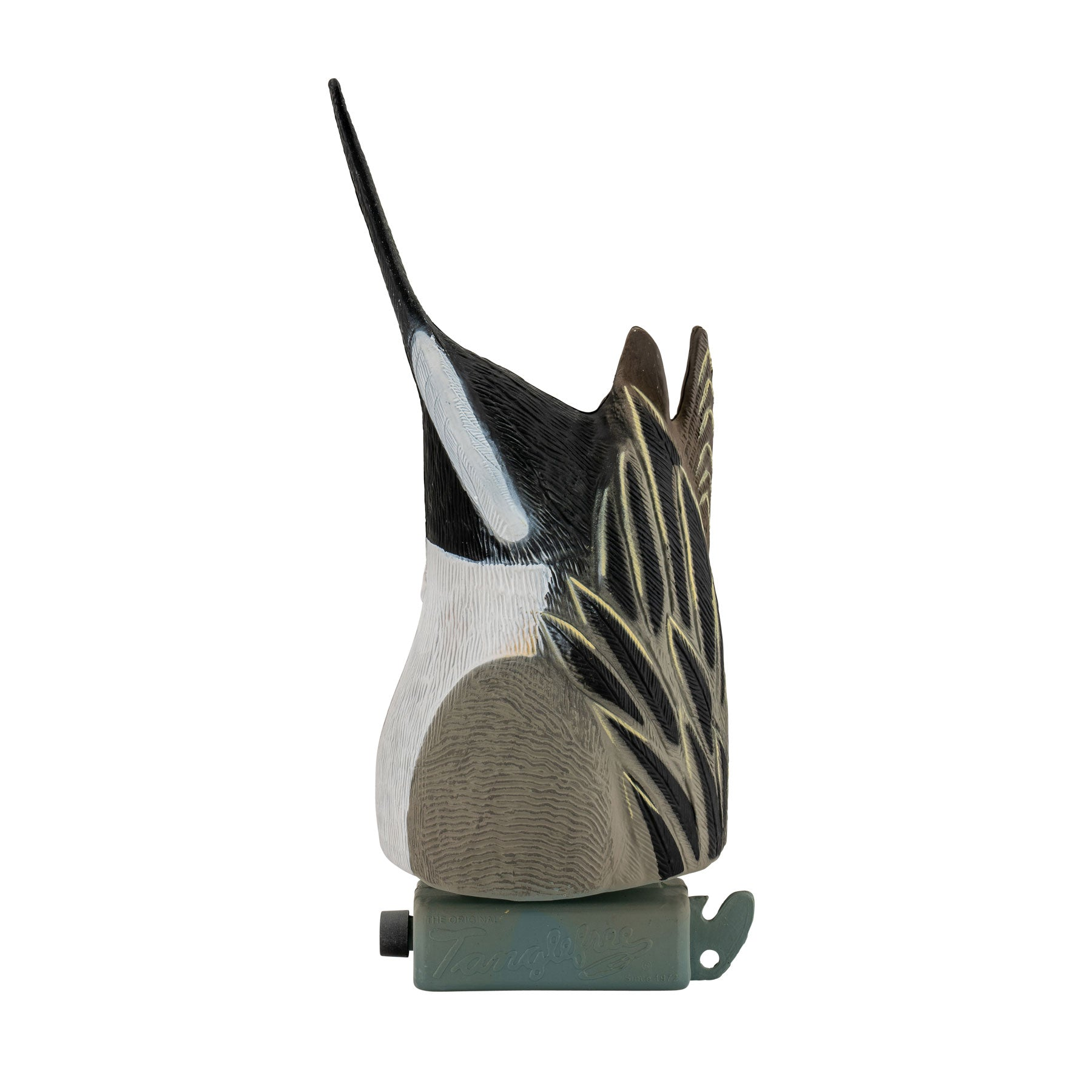 Pintail Feeders