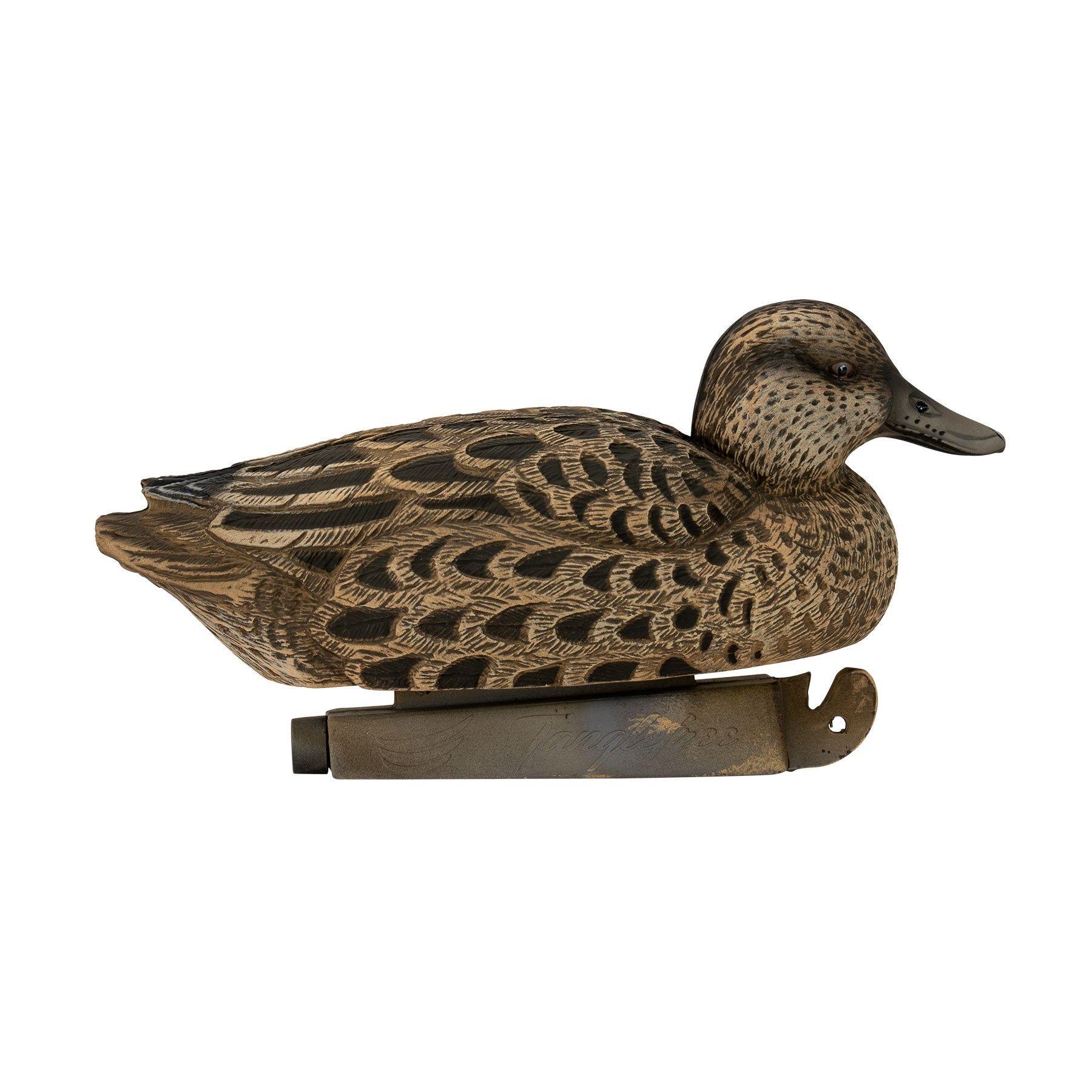 Flight Blue Wing Teal