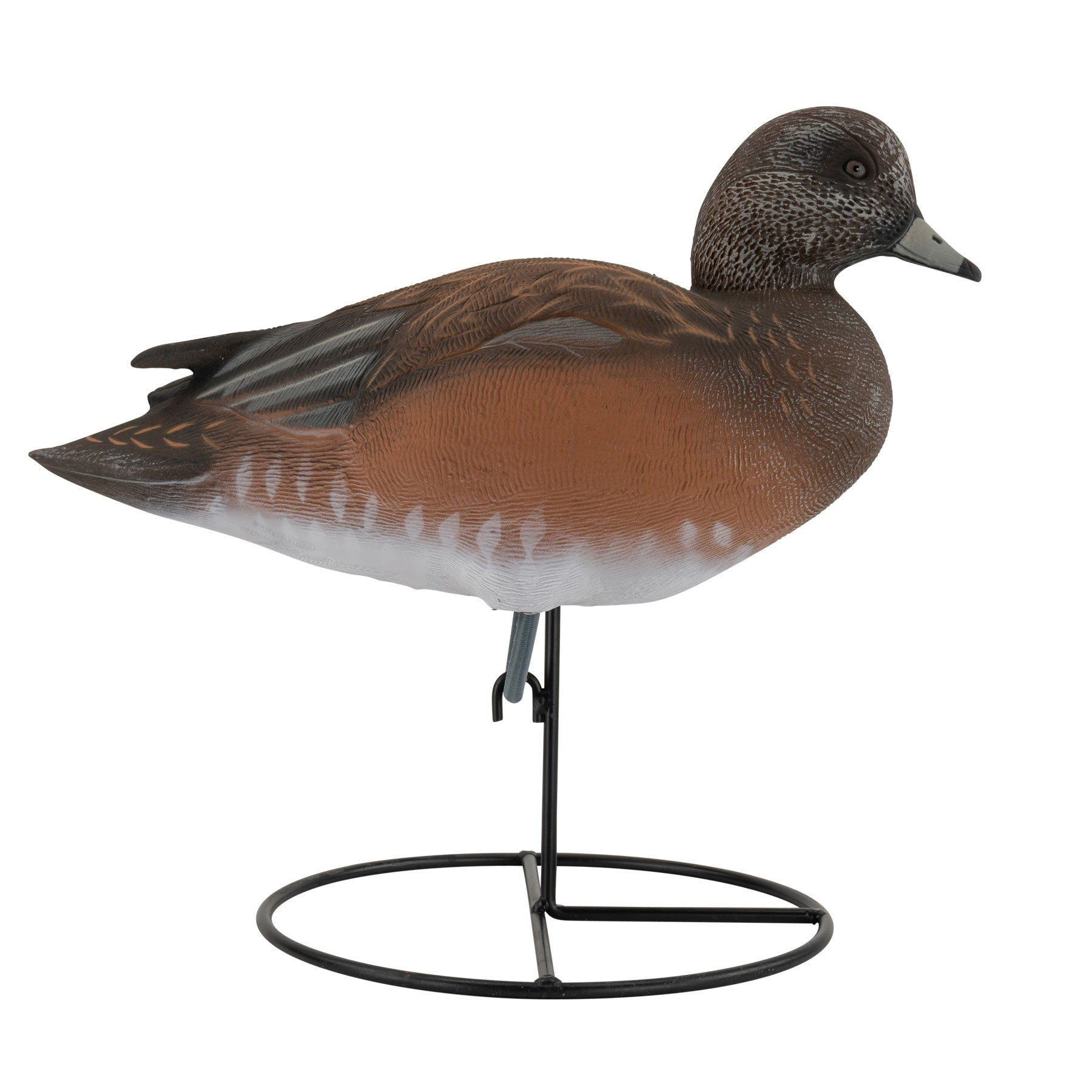 Pro Series Full Body American Wigeon