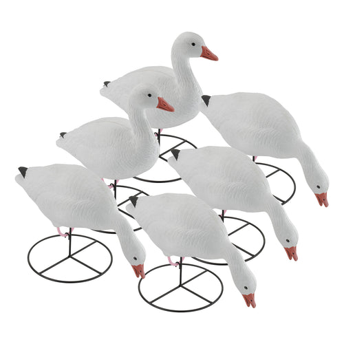 Pro Series Snow Goose Full Body Combo Pack