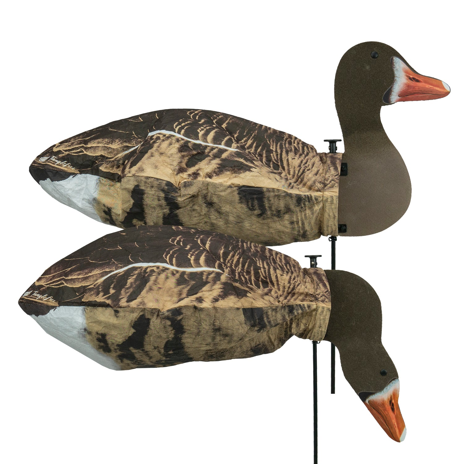 Specklebelly Goose Slammer Sock / 2D Head