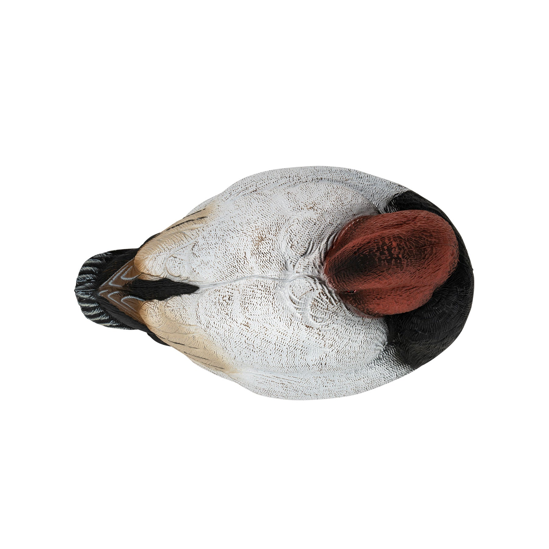 Flight Series Canvasback