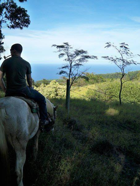 Horseback in Hawaii with a Fable Pipe.