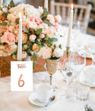 Rose Gold Foil Wedding Table Numbers