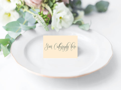 Blank Place Cards for Calligraphers