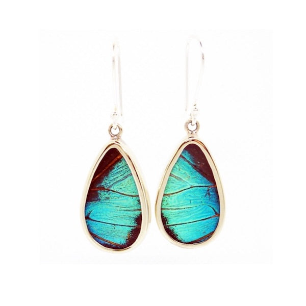 Butterfly Wing Earrings - Peru