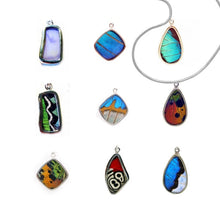 Butterfly Wing Necklace - Peru